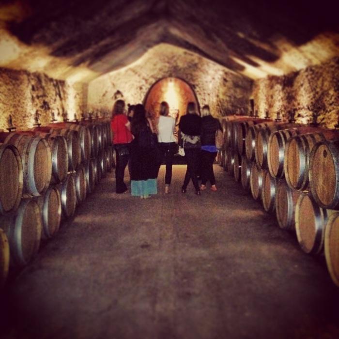 Cellar View Sonoma