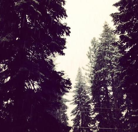 Tahoe Snowfall